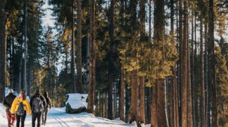 Jaka odzież do biegania na jesień i zimę?